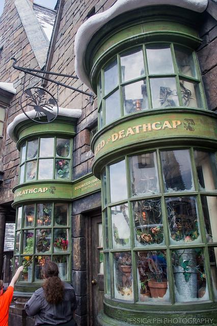 Universal Studios Harry Potter World Hogsmeade Shop