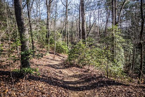 Pleasant Ridge Park-32