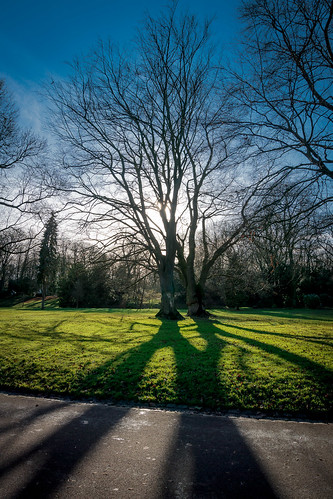 Winter shadows - Douai