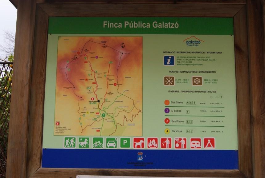 Excursión Finca Galatzó