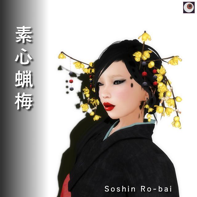 *NAMINOKE* Soshin Ro-bai
