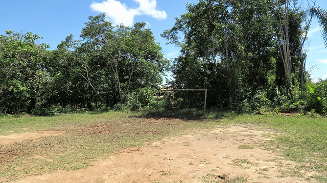 soccer field amazon rainforest