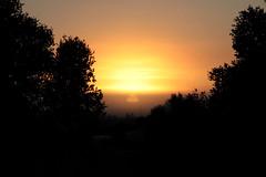 Penong sunrise