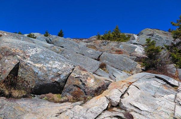 White Dot Trail Summit Approach