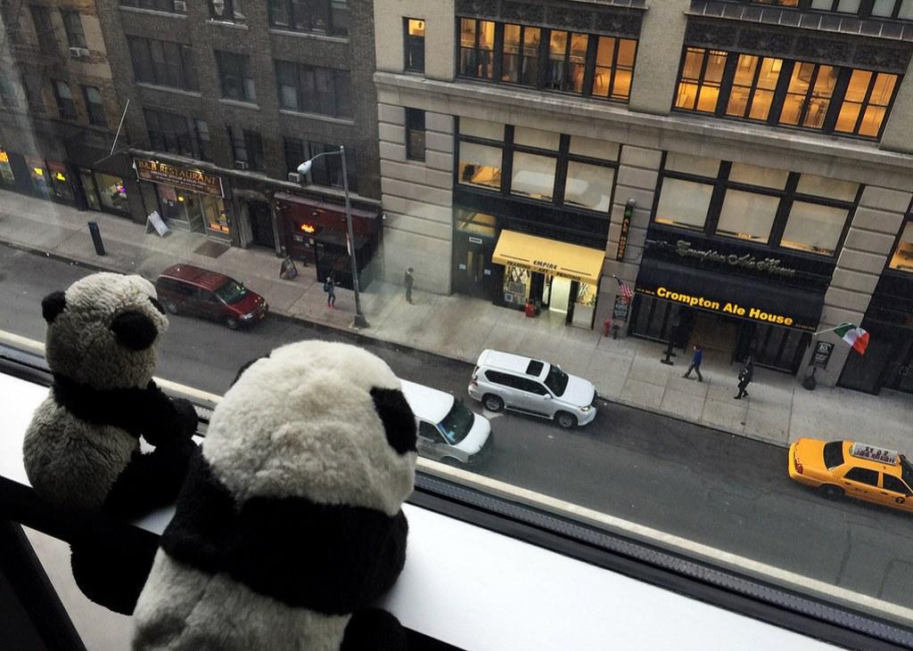 Pandas in NYC