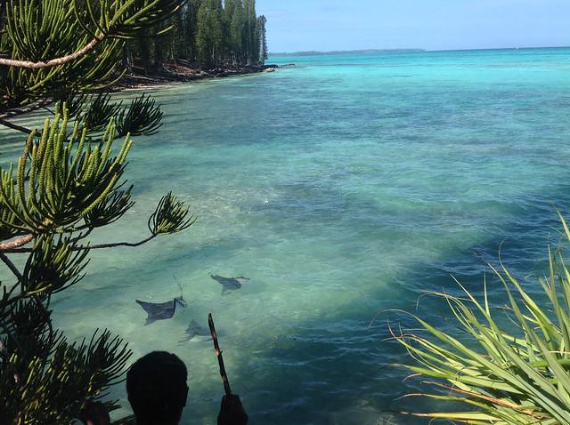 Nouvelle Calédonie Ile des pins