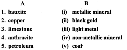 ICSE Solutions for Class 6 Geography Voyage - Minerals and Ores 3