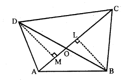 rd-sharma-class-10-solutions-chapter-7-triangles-revision-exercise-24.1