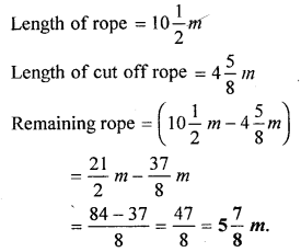 selina-concise-mathematics-class-6-icse-solutions-fractions-E-1