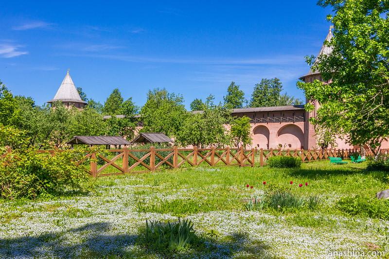 Фруктовый сад, Спасо-Евфимиев монастырь, Суздаль