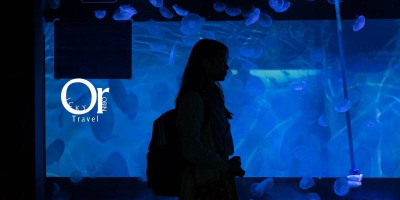 東京景點|親子遊、雨天備案推薦,逛完晴空塔來墨田水族館體驗夢幻水母給包圍吧!