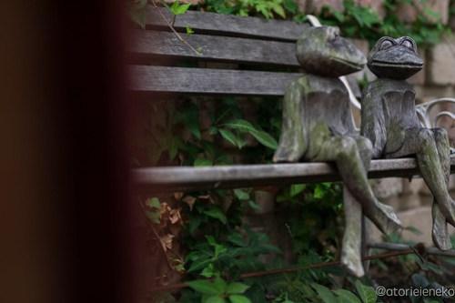 アトリエイエネコ Cat Photographer 42713052291_6e55c450ef 高槻 二十四節記 しっぽ天使主催【雑貨店&猫里親探し】 1日1猫!  高槻ねこのおうち 高槻 里親様募集中 猫写真 猫 子猫 大阪 保護猫 二十四節記 カメラ しっぽ天使 Kitten Cute cat