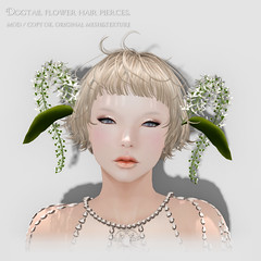 *NAMINOKE*Dogtail Flower Head