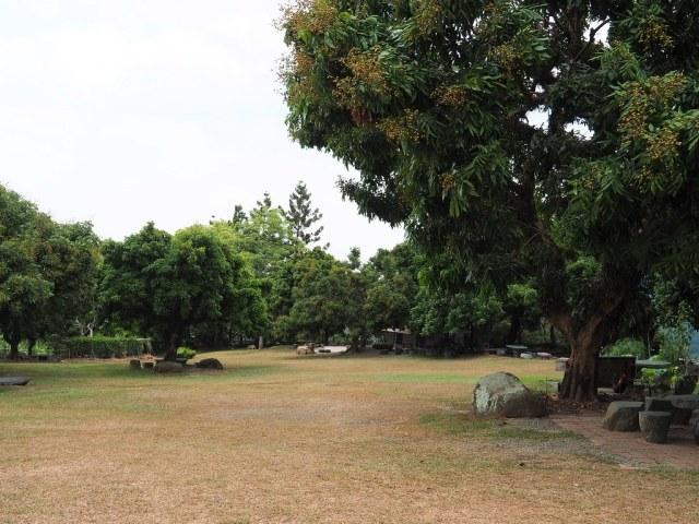 東山仙湖農場 (9)