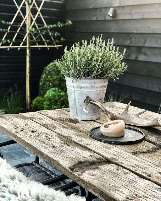 Pot met plant gewei en kaars op de tuintafel