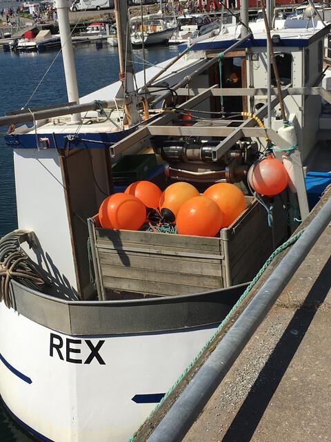 Havets_dag_ronnang - 52