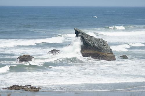 Oregon Coast and Sea Stacks-014