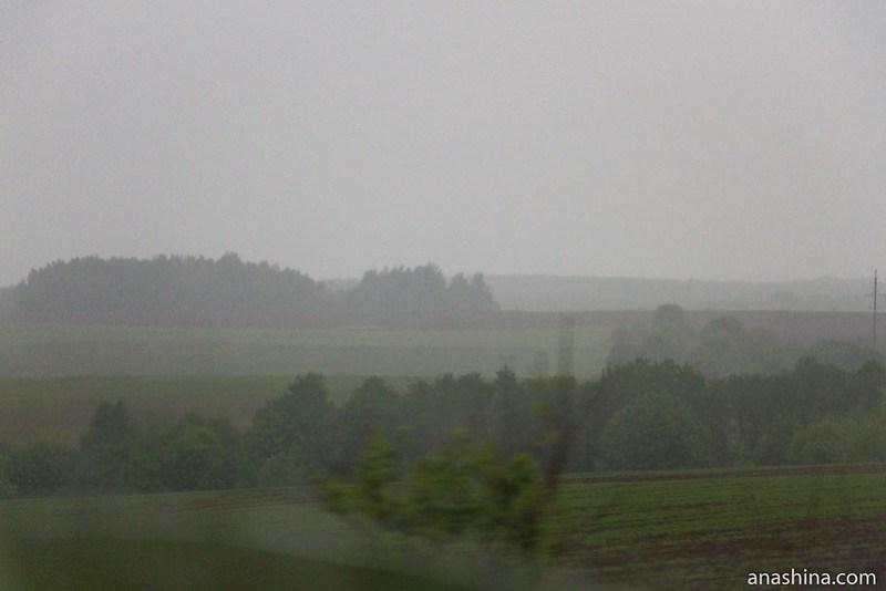 Поля и перелески, Владимирская область