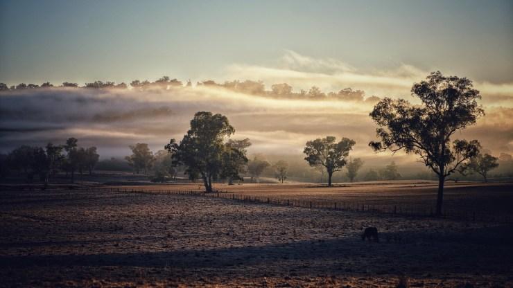 New England NSW landscape