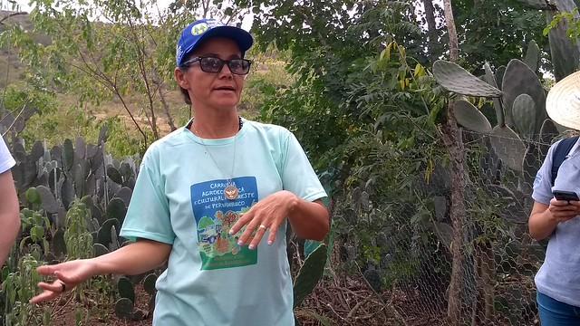 """""""A relação entre as mulheres, o Semiárido e a Agroecologia tem rendido bons frutos"""" - Créditos: Vanessa Gonzaga"""