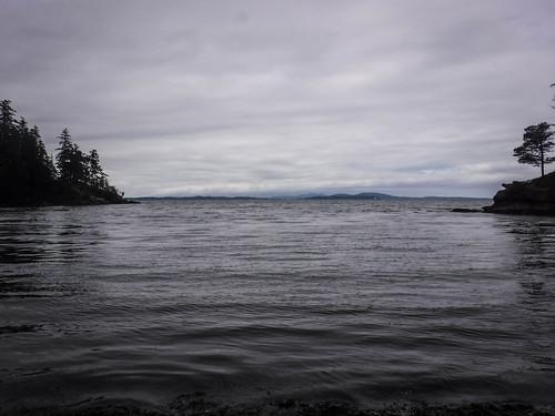 Solstice Selfie Paddle on Bellingham Bay-21