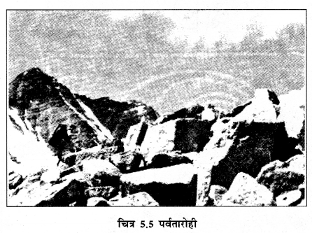 NCERT Solutions for Class 6 Social Science Geography Chapter 5 (Hindi Medium) 1