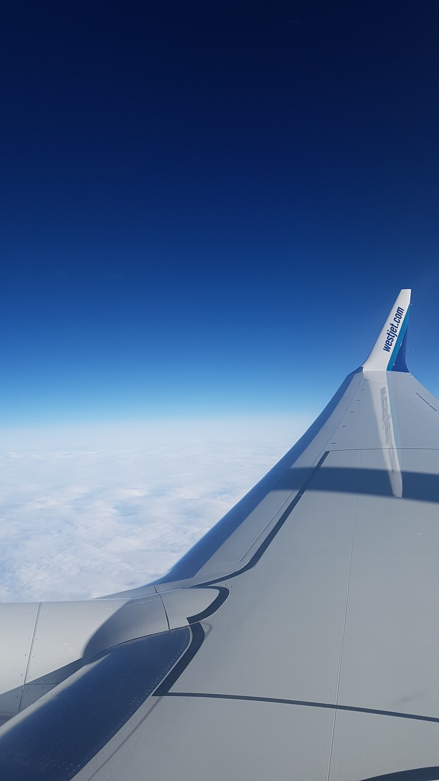 Wing and Sky