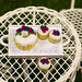 Miniature Dessert Tray: Cake & Cupcakes with Summer Berries