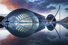 The Fish // City of the Arts and Sciences Valencia city Spain