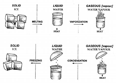 New Simplified Chemistry Class 6 ICSE Solutions - Matter 7