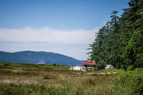 Samish Island Flower Farm-65