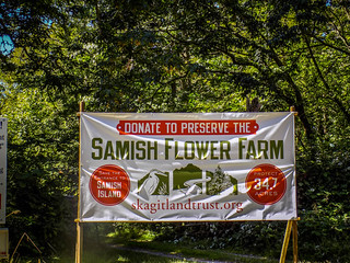Samish Island Flower Farm-003