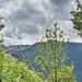Pirineu. Andorra