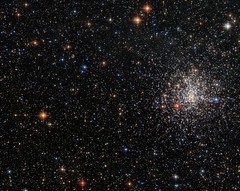 A globular cluster's striking red eye