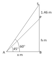 RS Aggarwal Solutions Class 10 Chapter 14 Height and Distance Ex 14a 14