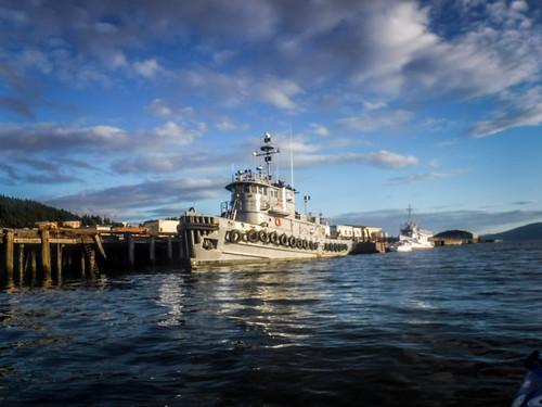 Bellingham Harbor with Moondance Kayaks-73