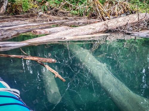 Kayaking on Baker Lake-84