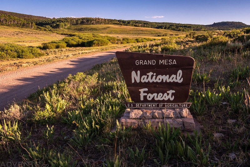 Grand Mesa National Forest Sign