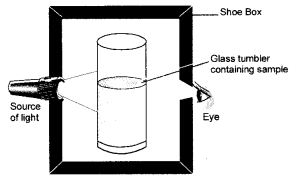 NCERT Exemplar Solutions for Class 9 Science Chapter 2 Is