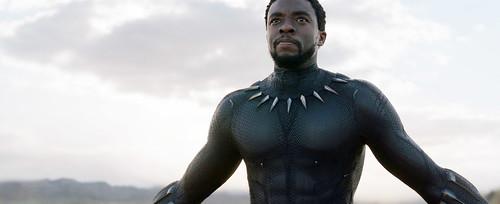 Black Panther 16 augusti