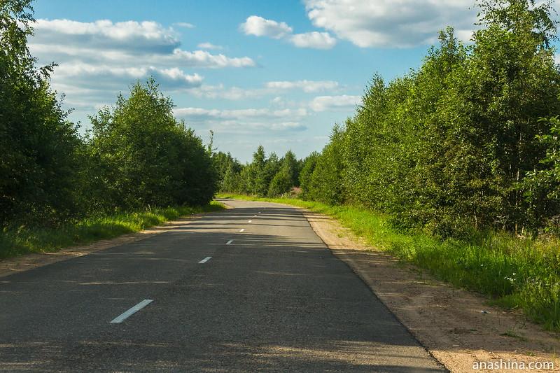 Дорога вдоль западного берега озера Мстино