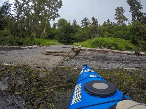 Solstice Selfie Paddle on Bellingham Bay-1