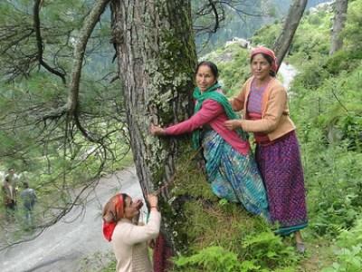पेड़ों को बचाने का प्रयास