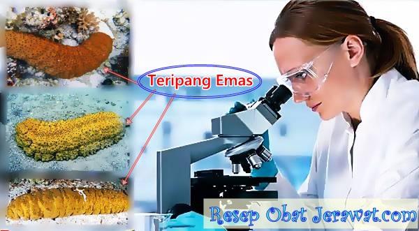 Obat Bopeng di Apotik Kimia Farma