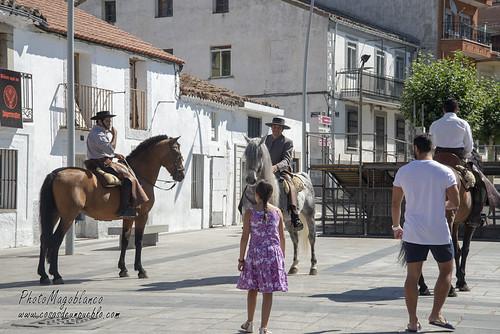 Desfile de Caballos enjaezados y Carrozas Romería del Valladal 2018 Las Navas del Marqués.