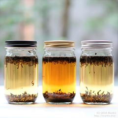 紅茶酵母 20180902-DSCT2284 (2)