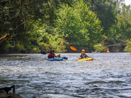 French Broad River - Rosman to Island Ford-180
