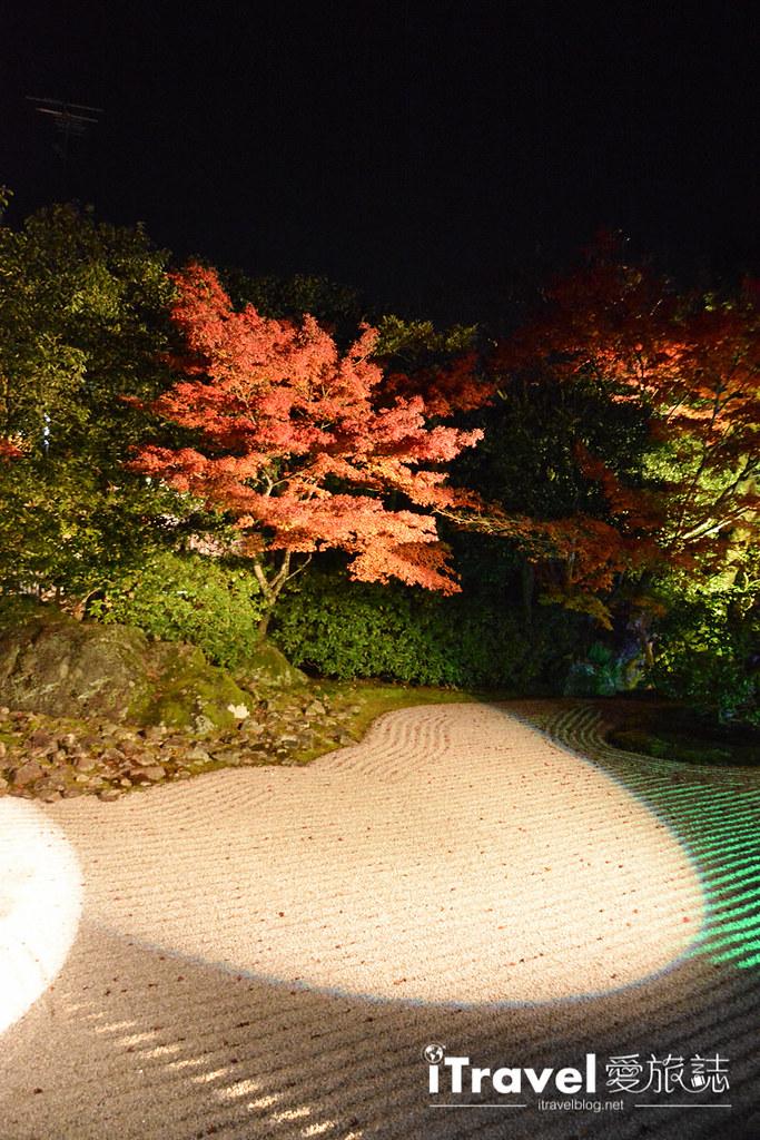 京都賞楓景點 圓德院 (15)