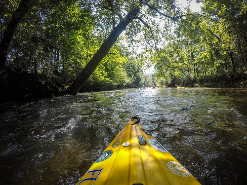 French Broad River - Rosman to Island Ford-18