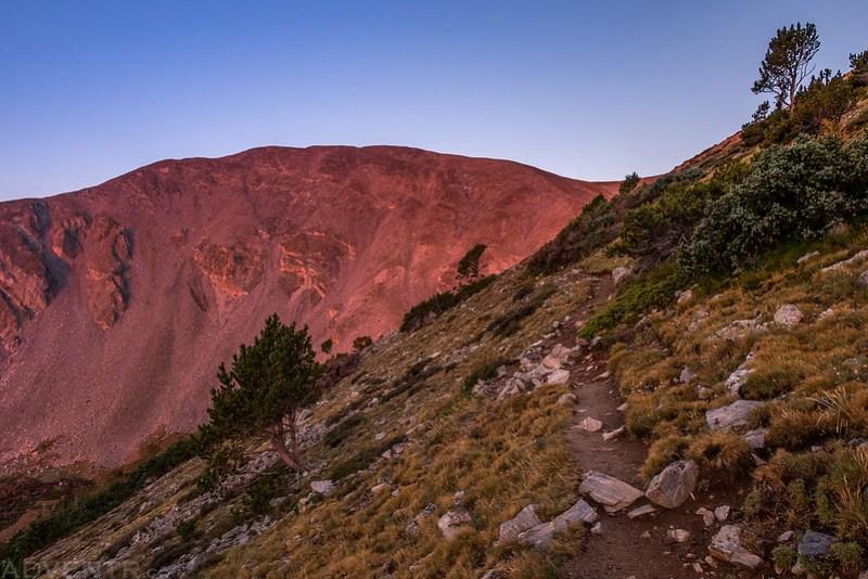 Shavano Trail
